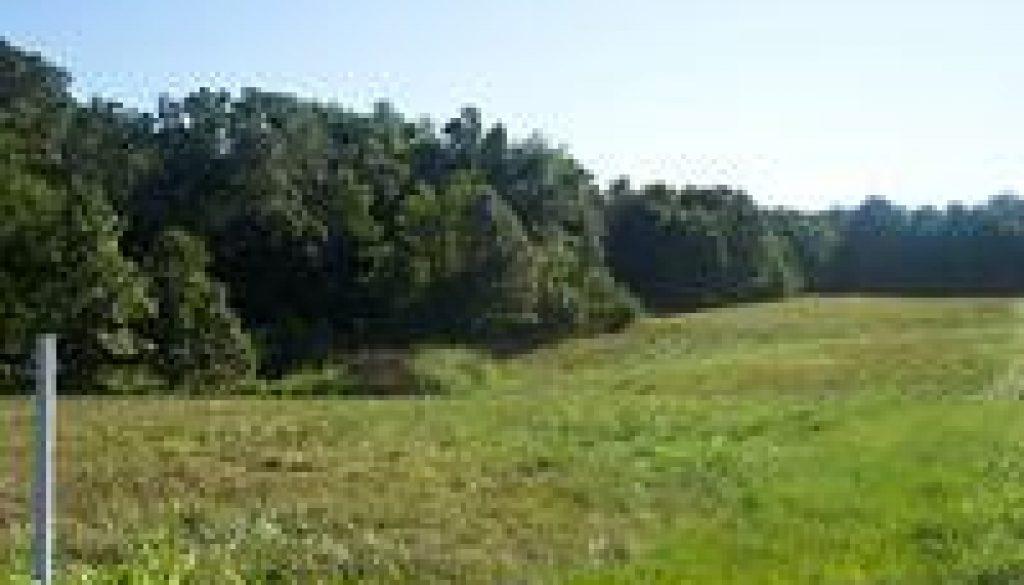 10-acres-rogersville